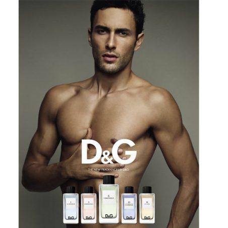 D & G 6 L'Amoureux. Парфюмерная вода (eau de parfum - edp) и туалетные духи (parfum de toilette) мужские