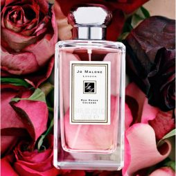 Red Roses Jo Malone